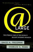 Cover of At large: the strange case of the world's biggest internet invasion